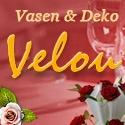 http://www.velou.de